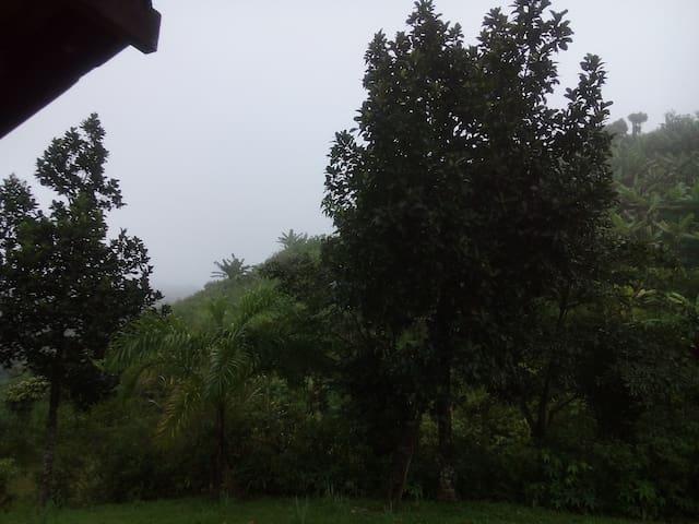 O turismo de natureza, turismo rural e ecoturismo - Chalet