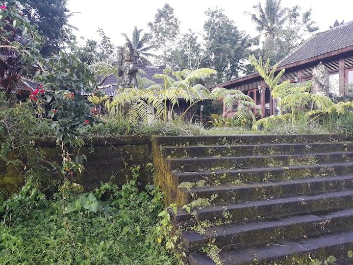Villa Ananda28