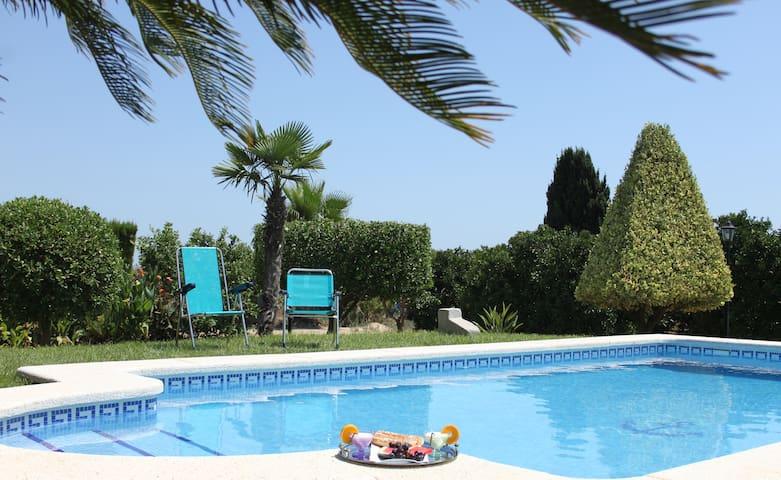 Alojamiento rural con piscina entre naranjos