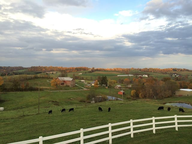 Great for Families, Awesome View, Amish Country