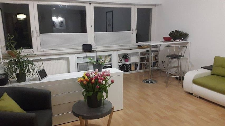 Zentrale 1 Zimmer Wohnung am Schloßgarten 45m2
