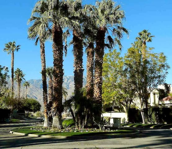 COMFORTABLE, HOMEY DESERT RETREAT - Cathedral City - Kondominium