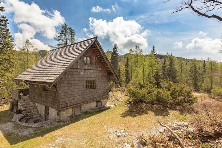 Bohinj - Mountain chalet on Vogel, Summer & Winter