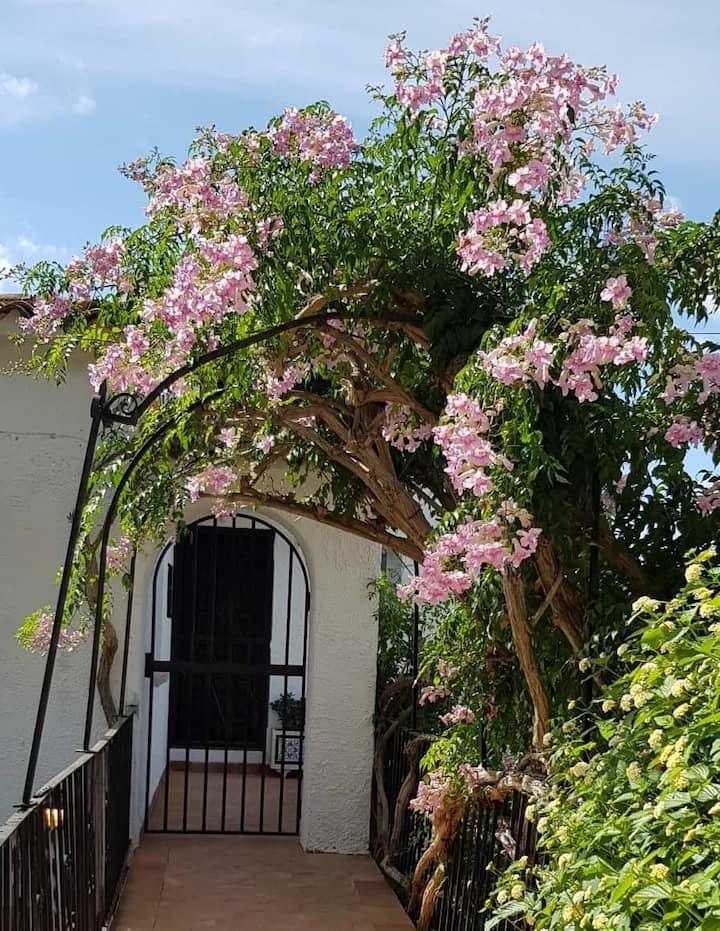 Fabulous refurbished apartment above private villa