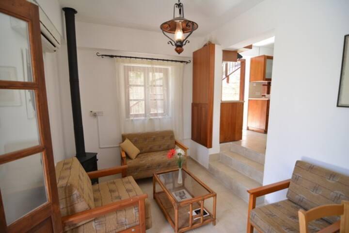 One-Bedroom Apartment (Atremis Suite)