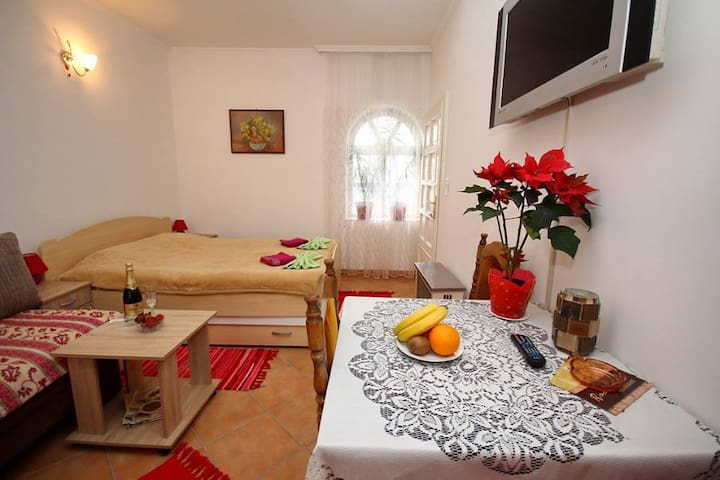 family studio for 4 - Palić - Apartemen