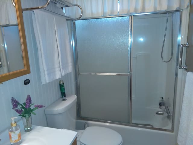 A very well equipped bathroom.