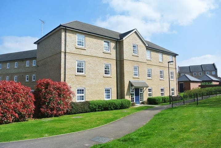 modern one bedroom apartment in sherfield park