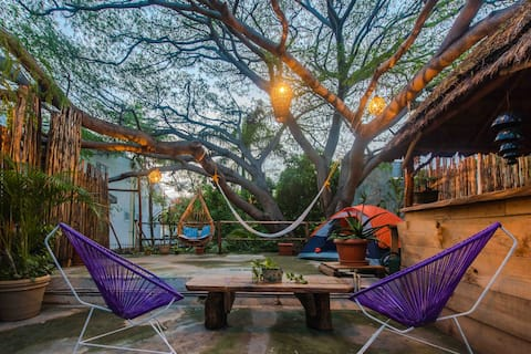 Treehouse, magical place in the center of the city.