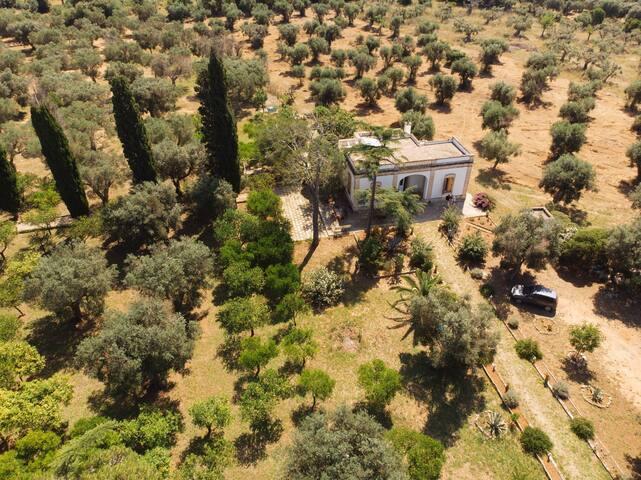 Villa Coluccia Farm Holiday with 4 privates rooms