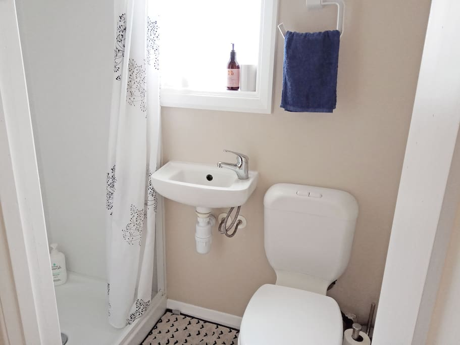 The ensuite bathroom! Your own private toilet, basin and shower.