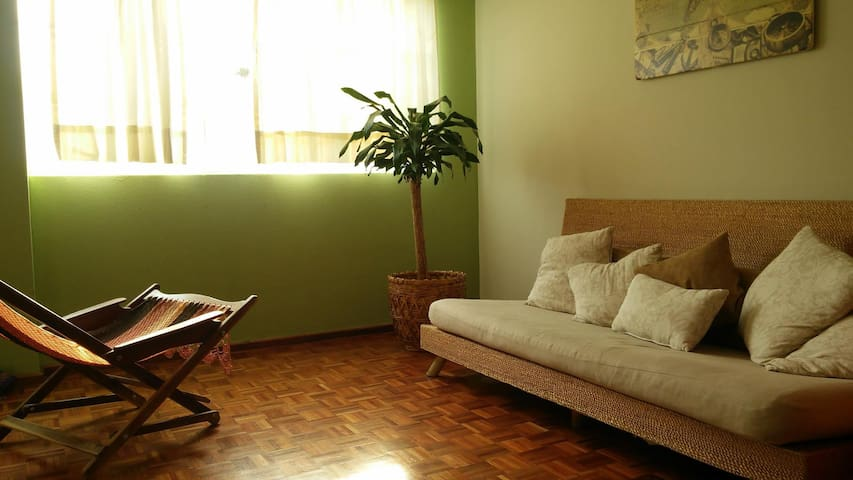 Comfy, private room/bath near Coyoacán - Ciudad de México - Apartmen