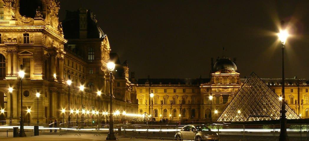 Séjour au Coeur de Paris - Paris - Appartement