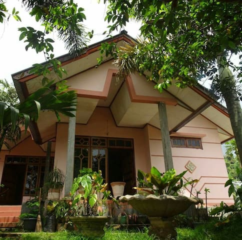 Friendly homestay - Bajawa - Huis