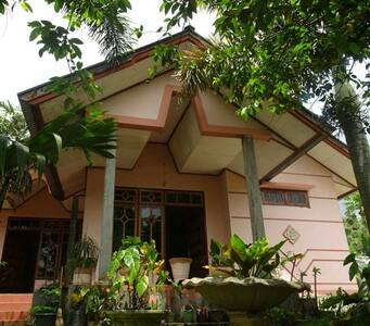 Friendly homestay - Bajawa - Talo