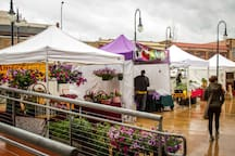 Farmers markets in Sequim & Port Angeles.