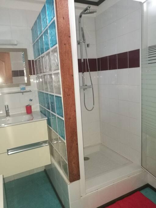 Salle d'eau avec toilettes + lave-linge