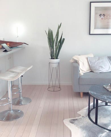 Minimalist, ground level Takapuna apartment