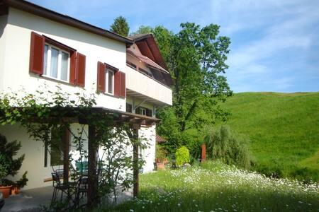 Wohnung möbliert im Diemberg - Eschenbach