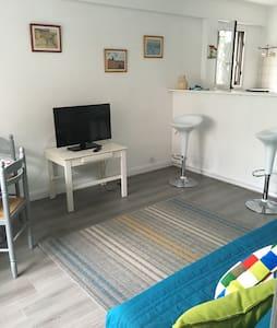 Spacious & Vibrant Apartment - Ciboure