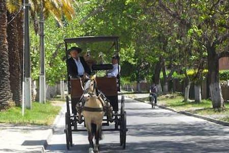 Hostal Gran Reserva - Isla de Maipo - Bed & Breakfast