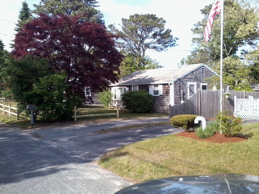 #902 Sea Stars Cottage: charming, quiet, WIFI, dog friendly, and great location!
