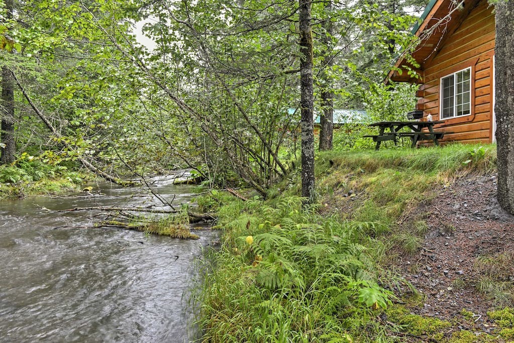 You'll be right next to a creek flowing with chilly bay waters and wild Alaskan salmon.