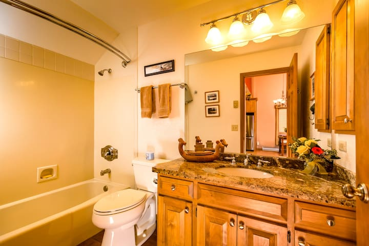 Second bathroom with granite counter, tile floor, large bathtub and shower