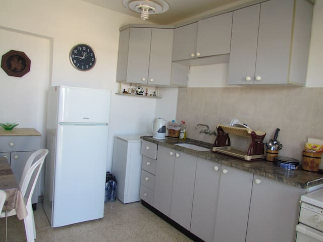 Private apartments with garden - Arad - Appartement