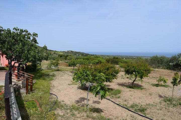 Casa Vacanze nel frutteto oliveto vista mare