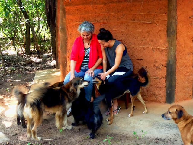 Nature & dog-lovers experience: Eco-lodge Bem-TeVi - Arembepe - 방갈로