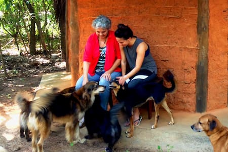 Nature & dog-lovers experience: Eco-lodge Bem-TeVi - Arembepe - Bungalov