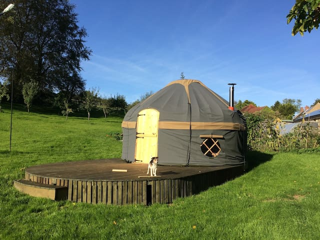Orchard Yurt - Rural Glamping in Farway, Devon