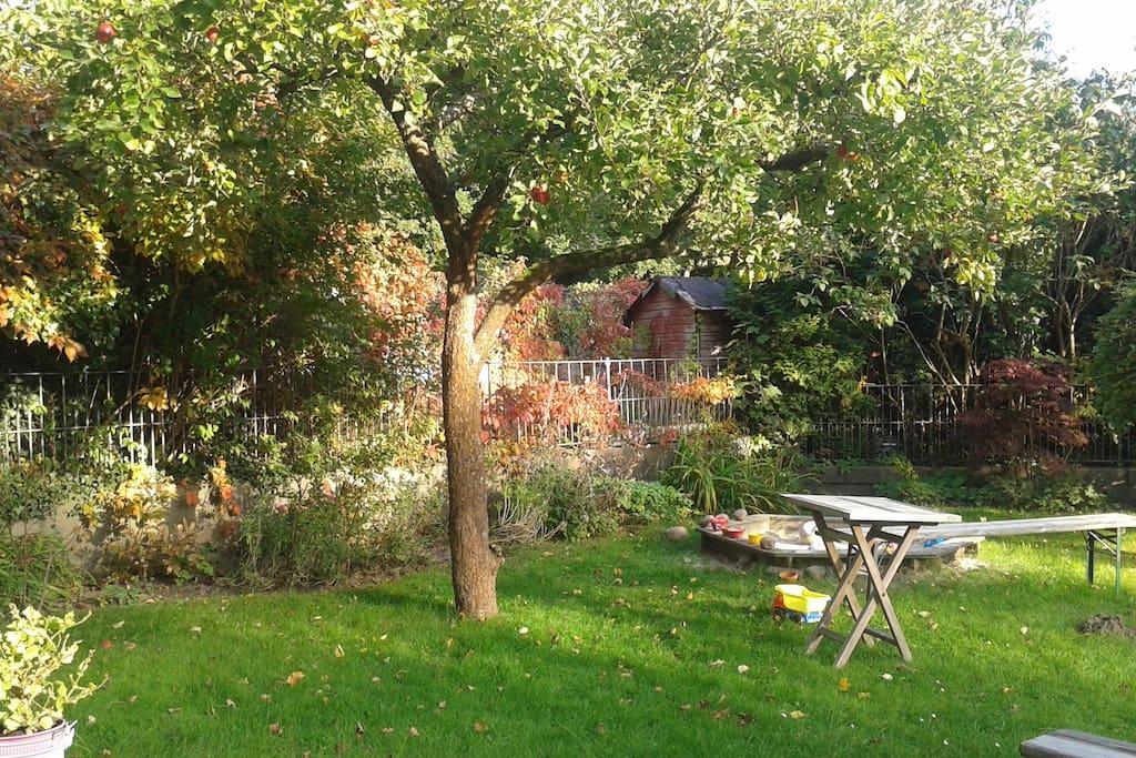 Garten zur Mitbenutzung, Blick aus dem Zimmerfenster