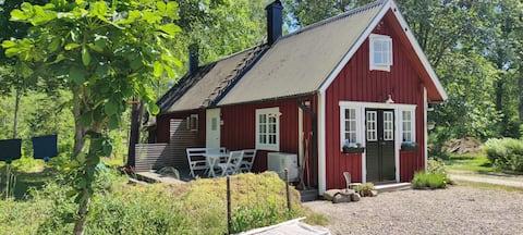 Ringsholm, gjestehus med badstue, 6 km til Åsnen.
