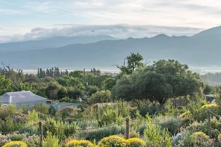 Cederkloof Botanical Retreat: Single Cottages