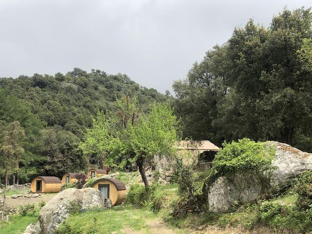 Hébergement insolite A Chjusella di e Sertine 1