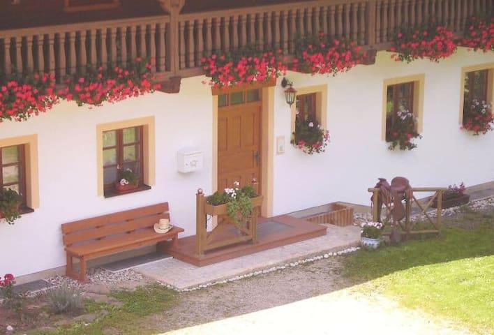 Ferienpension Posthof (Waldmünchen), Ferienwohnung-1, 74 m², Terrasse, Ausseneingang