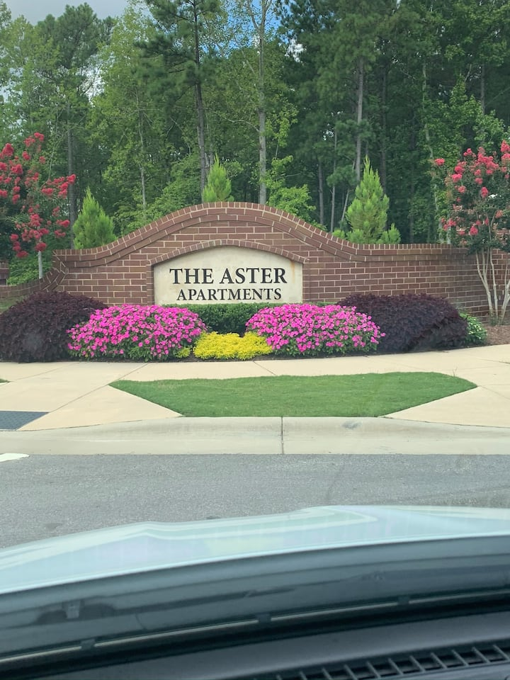 The Aster Apartments