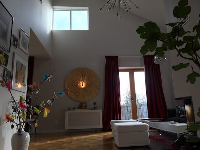 Large family home in very nice area - Danderyd - Villa
