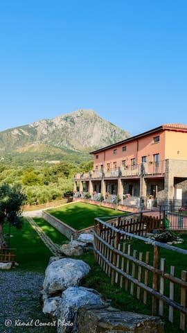 Al boschetto vacanze,Scario,Cilento - Bosco - Appartement