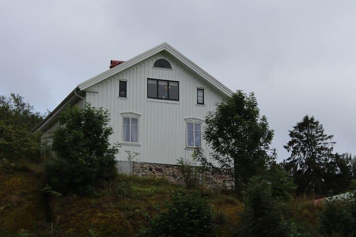 Hus på landet nära havet. Countryside and seaside.