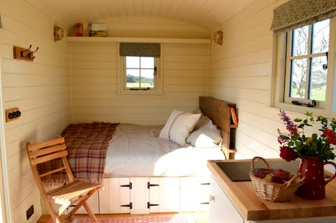 Glamping at Blandred Farm Shepherd's Hut