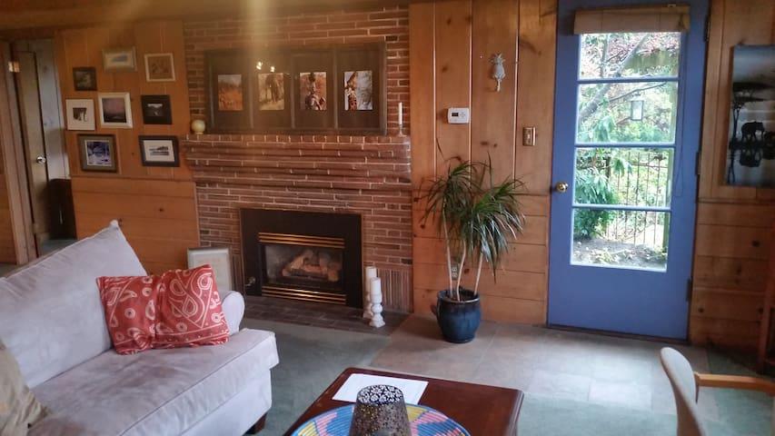 Cozy  Beach Cabin apartment