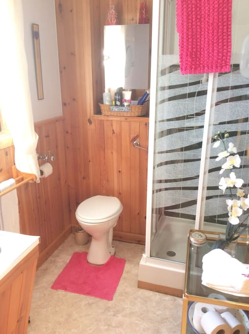 The attached bathroom to your ensuite.