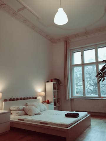 Beautiful room, huge flat, top location (P-Berg) - Berlin - Apartament