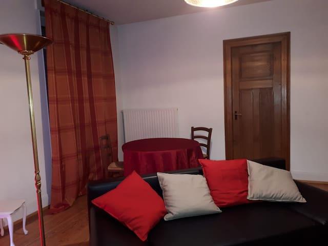 Chambre spacieuse dans appartement Parisien