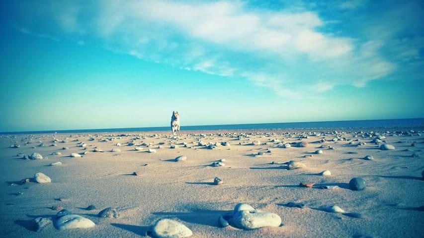 Cosy Beach Chalet - Norfolk