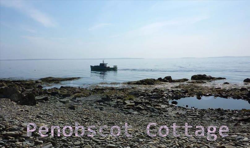 Penobscot Cottage - Oceanfront Camden Maine!