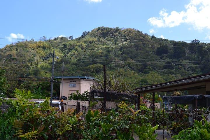 Mountain Breeze Inn